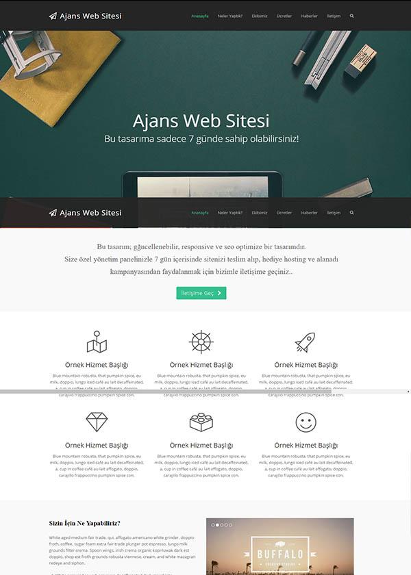 Ajans Web Sitesi 4