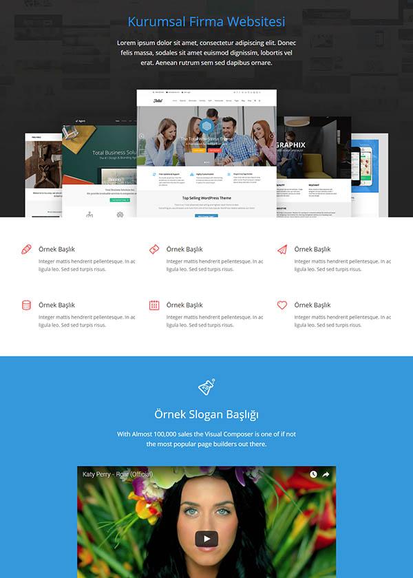 Şirket Web Sitesi 3